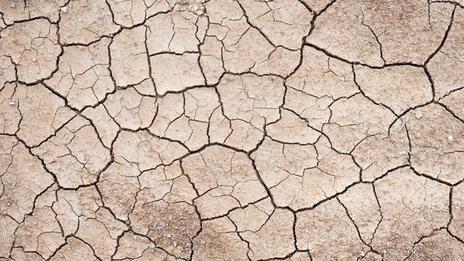 Climat : l'ouest des Etats-Unis face à une sécheresse historique