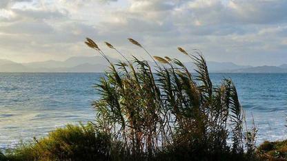 Pluie et vent fort en Méditerranée ce week-end
